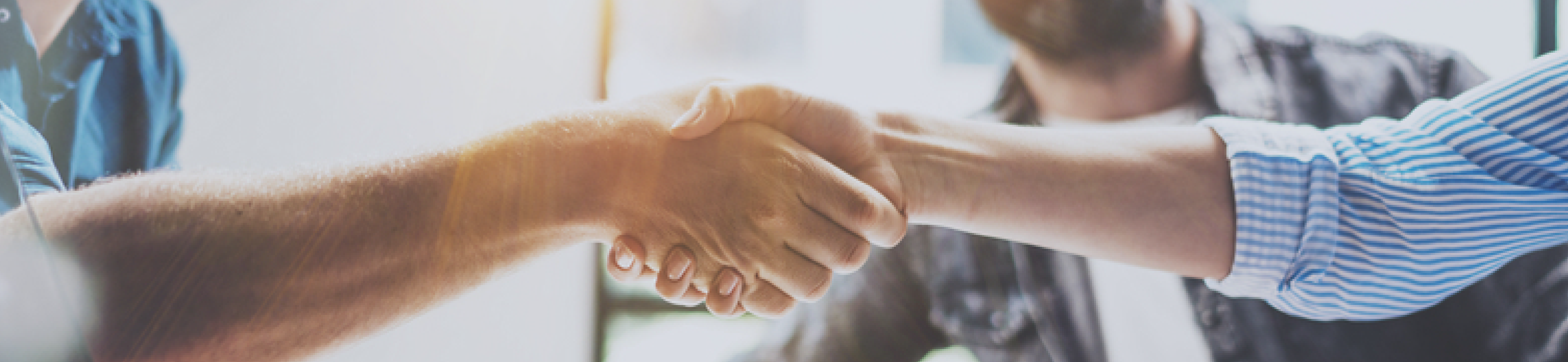 business-partnerships_header